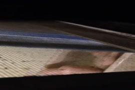 Ver videos de hombres bien papasotes cogiendo en albercas